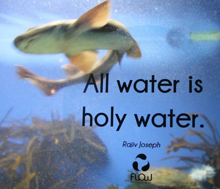 Water Love Quotes: A Source Of Inspiration