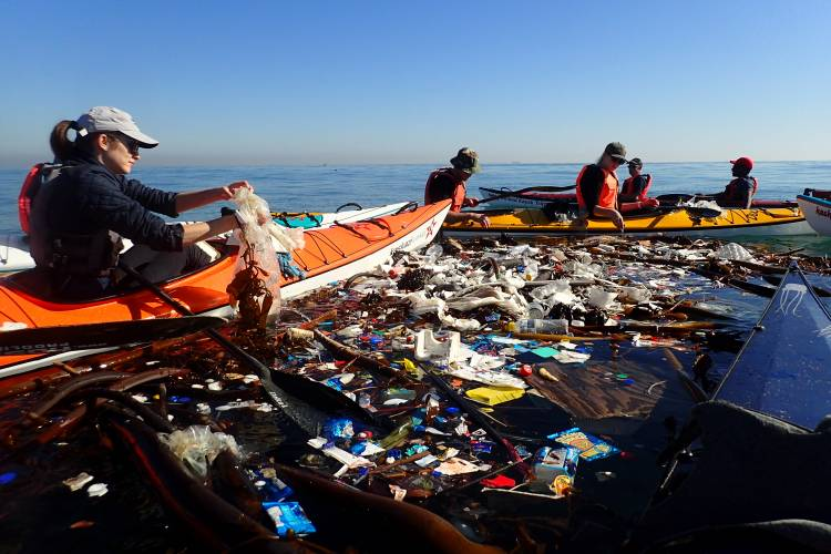 A Rethink the Bag pledge from Cape Town s seas – Blog – Two Oceans ... c34e9cdf2494