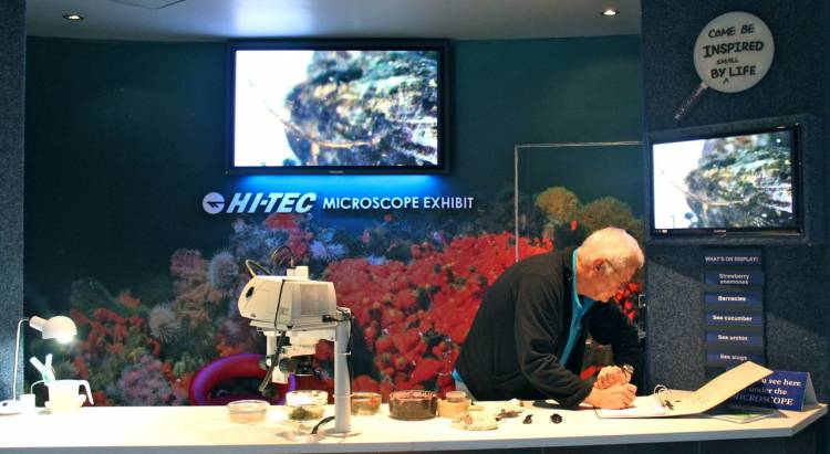two oceans aquarium, cape town, south africa, aquarium, hi-tec microscope exhibit, hi-tec, microscope